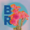 Bottlerocknapavalley.com logo