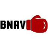 Boxingnewsandviews.com logo