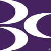 Brightoncentre.co.uk logo