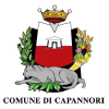 Capannori.lu.it logo