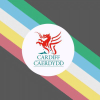 Cardiff.gov.uk logo