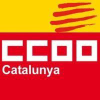 Ccoo.cat logo