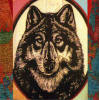 Chanceswithwolves.com logo