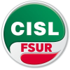 Cislscuola.it logo