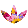 Clareflorist.co.uk logo