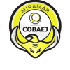 Cobaej.edu.mx logo
