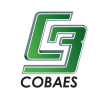 Cobaes.edu.mx logo