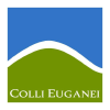 Collieuganei.it logo