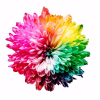 Colourlovers.com logo