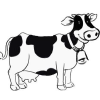 Cownetworth.com logo