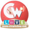 Cricwindow.com logo