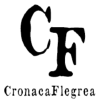 Cronacaflegrea.it logo