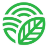 Dailydish.co.za logo
