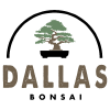 Dallasbonsai.com logo