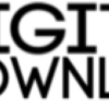 Digitallydownloaded.net logo