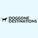 Doggone Destinations