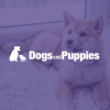 Dogsandpuppies.co.uk logo