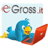 Egross.it logo