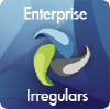 Enterpriseirregulars.com logo