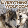 Everythingwolf.com logo
