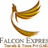 Falconexpress.com.pk logo
