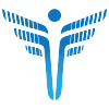 Feisystems.com logo