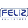 Felizspanish.co.kr logo