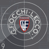 Fiocchigfl.it logo