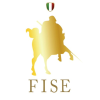 Fise.it logo