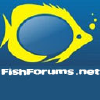 Fishforums.net logo