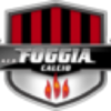 Foggialandia.it logo