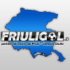 Friuligol.it logo