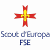 Fse.it logo
