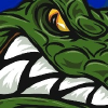 Gatorcountry.com logo