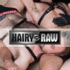 Hairyandraw.com logo
