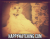 Happywatching.com logo