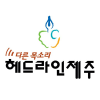 Headlinejeju.co.kr logo