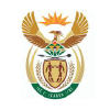 Health.gov.za logo