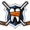 Hockeyfights.com logo