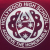 Hollywoodhighschool.net logo
