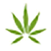 Honestmarijuana.com logo