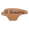 Ilbussetto.it logo