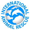Internationalanimalrescue.org logo