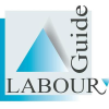 Labourguide.co.za logo