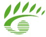 Learningnetwork.ac.nz logo