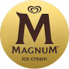 Magnumicecream.com logo