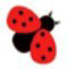 Maybugs.com logo