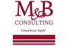 Mbconsulting.info logo