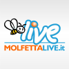 Molfettalive.it logo