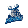 Moosehockey.com logo